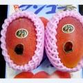 Deux mangues Taiyo no tamago vendues 2 125 euros aux enchères à Tokyo