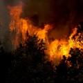 Elle met le feu à une forêt pour occuper ses amis pompiers qui s'ennuyaient