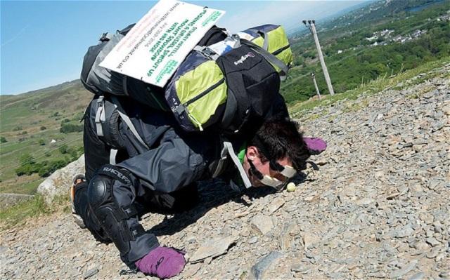 Il gravit une montagne en poussant avec le nez un chou de Bruxelles