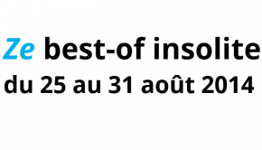 2014 08 25 - 31 08 Best-of insolite