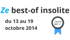 2014 10 13 - 19 10 Best-of insolite