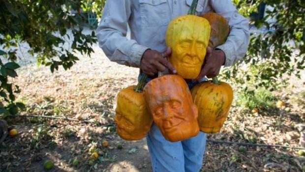 Des citrouilles en forme de Frankenstein pour Halloween