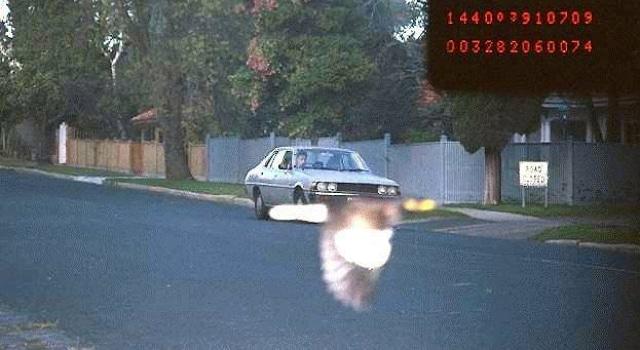 oiseau devant radar australie exces de vitesse