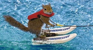 Twiggy écureuil ski nautique