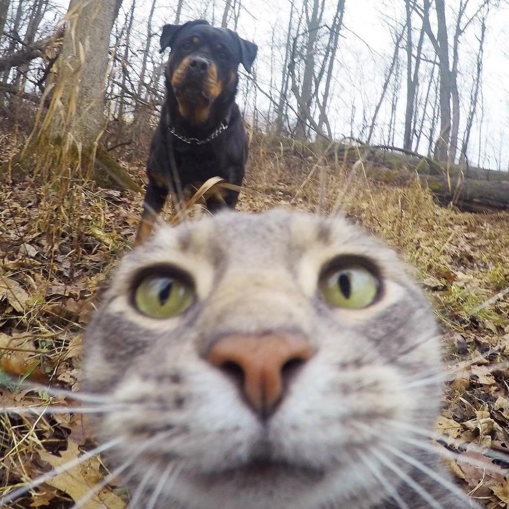Manny est pro des selfies