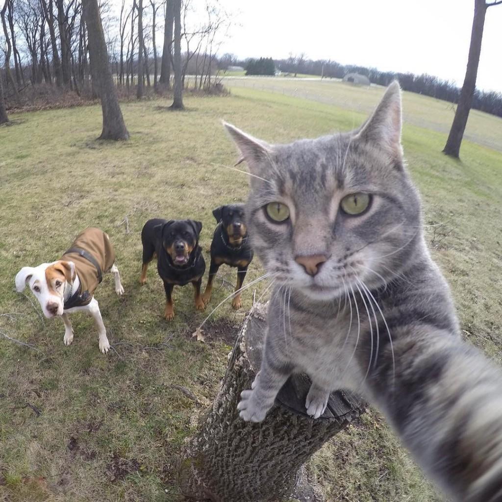 Manny chat pro des selfies avec ses amis