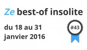 Best of insolite janvier 2016