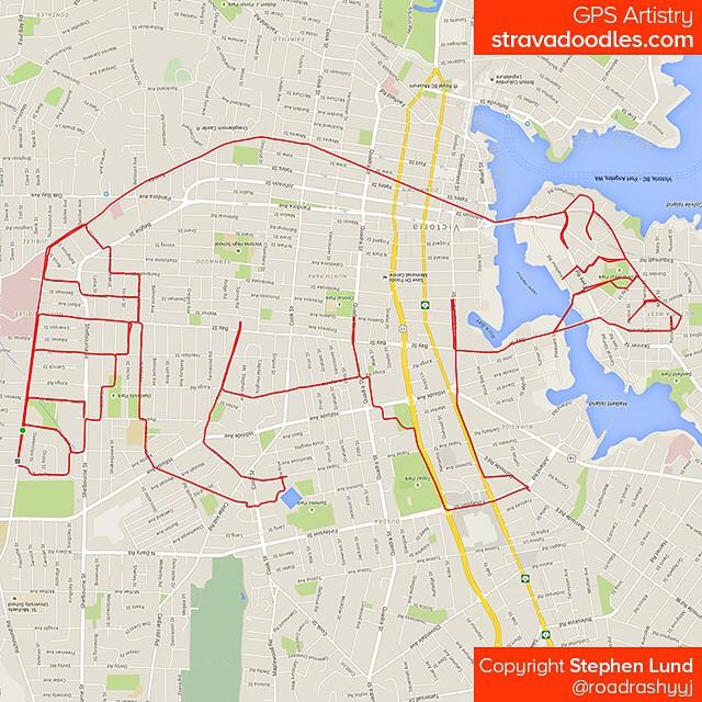 Raton laveur tracé sur carte avec un GPS