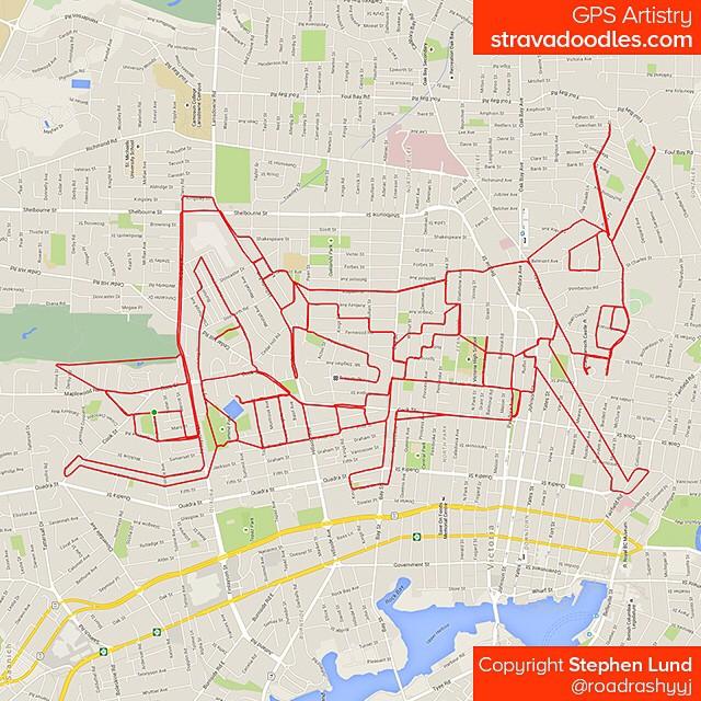 Sauterelle tracée sur carte avec un GPS