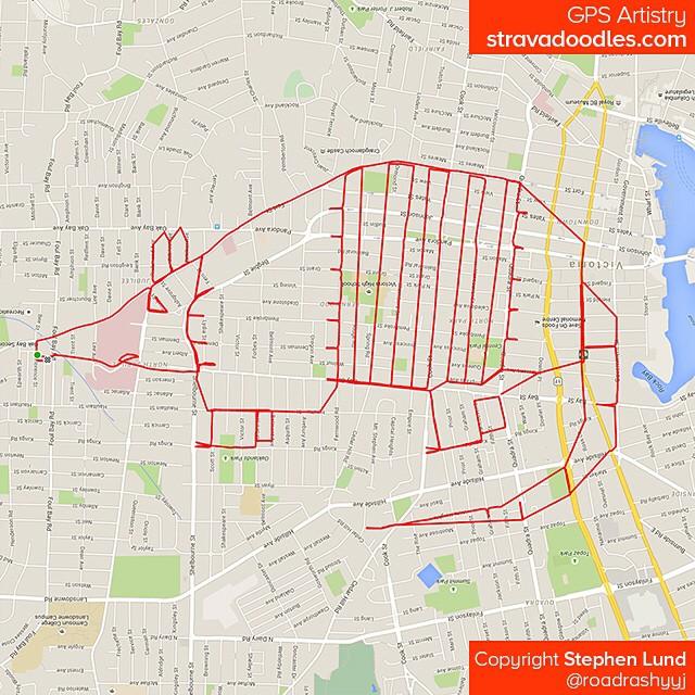 Tatou tracé avec GPS