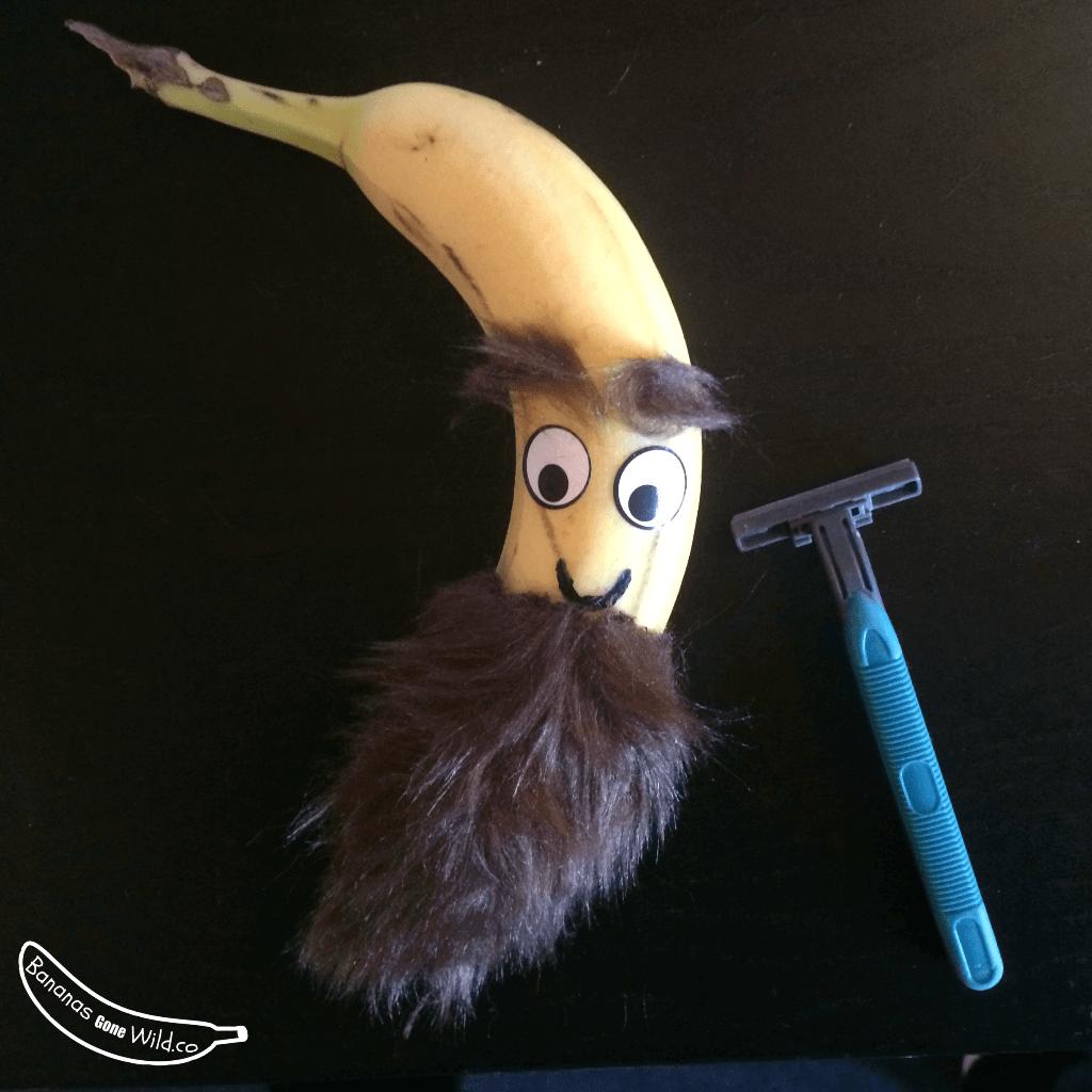 Banane barbue - business plan insolite