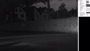 Perroquet flashé par un radar en Allemagne